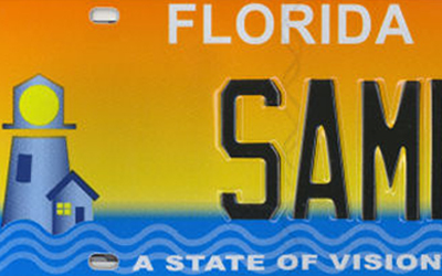 support Lighthouse of Southwest Florida through the purchase of a state of vision license plate